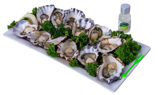 oysters-png